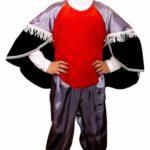 костюм снегиря