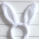 уши зайца